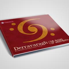CD-cover-Derravaragh