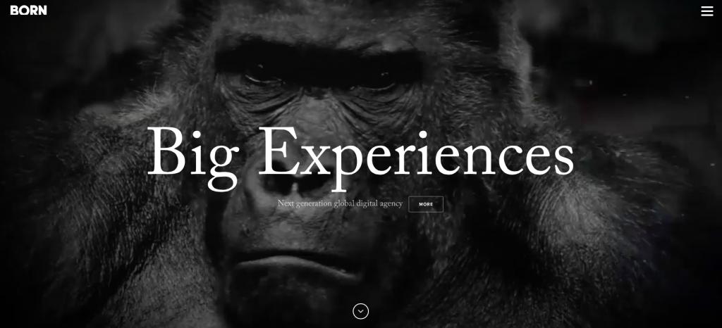 website trend1